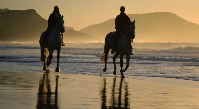 horse riding beach cascais, surf, activities